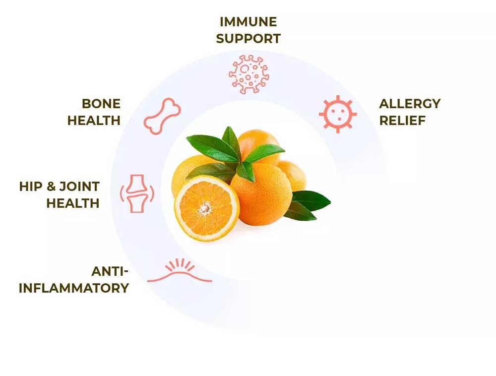 vitamin c wheel